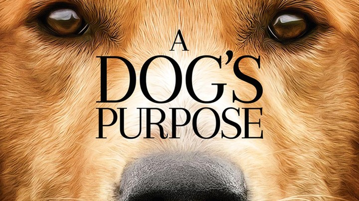 RTL Sneak Preview: A Dog's Purpose