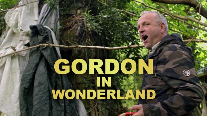 Gordon In Wonderland