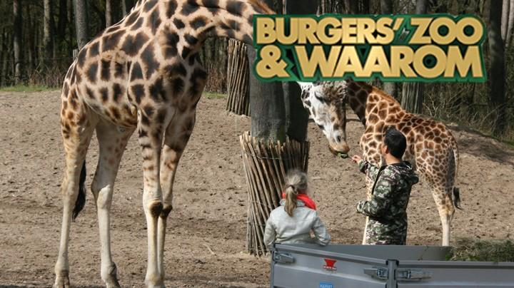 Burgers' Zoo En Waarom
